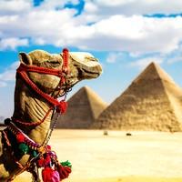 春节热卖:北京-埃及开罗+亚历山大+卢克索+红海8天跟团游