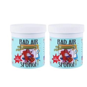 Bad Air Sponge 空气净化剂 2盒装