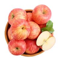 潘苹果 甘肃天水红富士苹果 12粒装 约70mm 总重约4斤