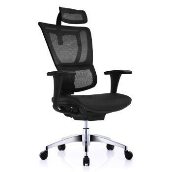 Ergonor/保友电脑椅 优/ioo智尚版椅子家用人体工学椅 护腰办公网椅 黑色-铝合金脚 标配