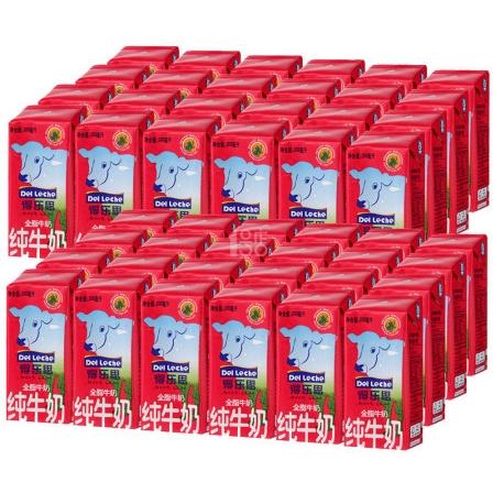Del Leche得乐思 全脂牛奶 200mL*24盒*2箱