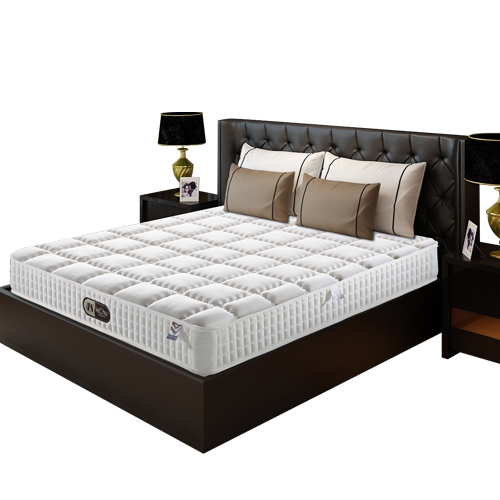 蕾舒 席梦思两用乳胶床垫(1cm乳胶+弹簧 1.8*2.0米)
