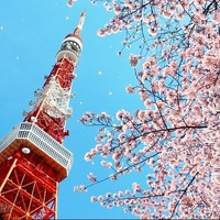 特价机票:春秋航空 上海-日本东京(茨城)4-9日往返