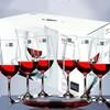 SCHOTT ZWIESEL 肖特圣维莎 红酒杯套装礼盒(酒杯*6只+斜口醒酒器)