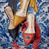 Sam Edelman point 女士尖头绑带款平底鞋