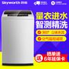 创维(Skyworth)T60B 6公斤波轮洗衣机