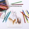 雄狮 水溶性儿童绘画水溶彩铅 36色
