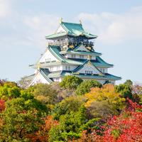 特价机票:春秋航空 上海直飞茨城+大阪4-9天往返含税