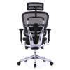 Ergonor 保友辦公家具 人體工學電腦椅 金豪+E 標配+舒躺寶