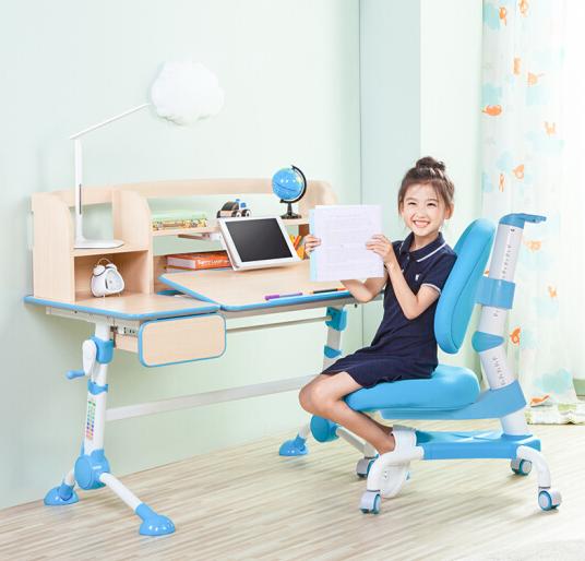 心家宜 111-207 可升降儿童学习桌椅套装