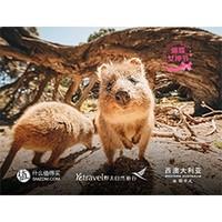 旅行家 : 西澳大利亚十大挑战 行中播报第1期