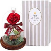 13日20点:I'M HUA HUA红色永生花玫瑰花彩灯小鹿玻璃罩礼盒同城鲜花速递生日礼物七夕情人节礼物送女生女友