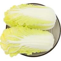 绿鲜知 三宝白菜 大白菜 大娃娃菜 约1kg 火锅食材 产地直供 新鲜蔬菜 *6件