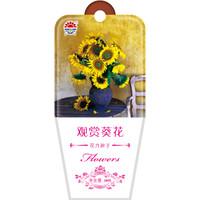 京东PLUS会员 : DS 北京东升种业 花卉种子 观赏葵花 20粒 *30件