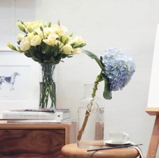 FLOWERPLUS 花加 简花 订阅鲜花 单次体验 (送花瓶)