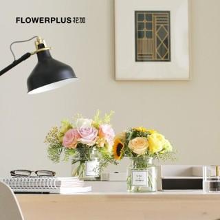 FlowerPlus 花加 教师节暖阳主题 鲜花花束 (送花瓶)