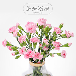 春舞枝 鲜花DIY 花材随心搭配