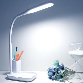 大头人 datouren LED台灯护眼灯学生学习读写充电小台灯宿舍卧室床头儿童书桌阅读灯