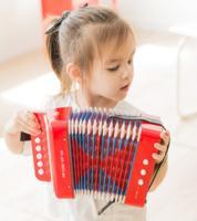 NEW CLASSIC TOYS 儿童手风琴玩具