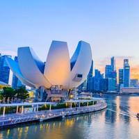 雙11預售 : 新加坡接送機服務 可送至市區/樂高樂園/圣淘沙/動物園等