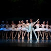 門票特惠 : 上海東方藝術中心 俄羅斯莫斯科古典芭蕾舞劇《天鵝湖》門票