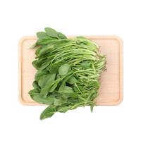 小汤山 菠菜苗 约200g 新鲜蔬菜 火锅食材