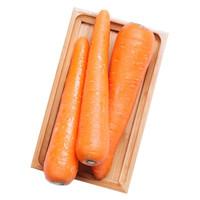 沱沱工社 有机胡萝卜 约300g 新鲜蔬菜