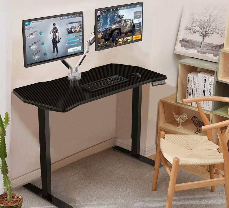 Loctek 乐歌 电竞电动升降桌