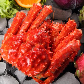大口鲜 智利熟冻帝王蟹1.4-1.6Kg 大螃蟹 海鲜水产