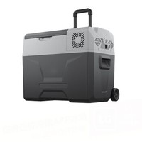 Alpicool 冰虎 CX30 車家兩用冰箱 -20℃壓縮機制冷 30L