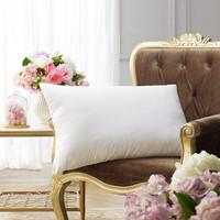 堂皇 枕芯家纺 单人枕枕芯 纤维枕 柔软舒适依梦枕头安睡枕 白色 48*74cm