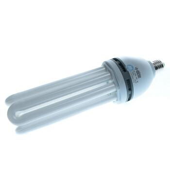 小器鬼 ODBE-40  65W  白 小器鬼节能灯 E27 /个