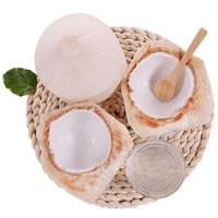 展卉 泰国进口椰青 9个装 单果800g以上 赠送开椰器和吸管