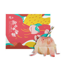 阳山 白凤水蜜桃 礼盒装 250g*12个装