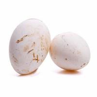 农家散养鹅蛋 6枚 *2件