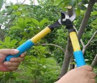 蒙德姬特 果樹 園藝剪刀 鯊魚小粗枝(剪切2.5厘米內)