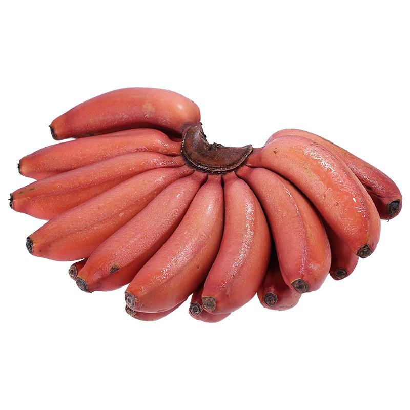 泰和生活 红皮美人蕉 2.5kg