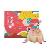 移动专享: 阳山 水蜜桃  桃子礼盒 4两果 12个装
