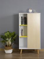 北歐書柜書櫥帶門 家用簡約置物柜  客廳創意收納儲物柜裝飾柜