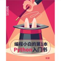 《编程小白的第一本 Python 入门书》Kindle电子书