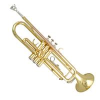 美德威小號樂器 MIDWAY 小號樂器 入門降B調小號 樂隊專用 MTR-500 磷銅升級版 MTR-501