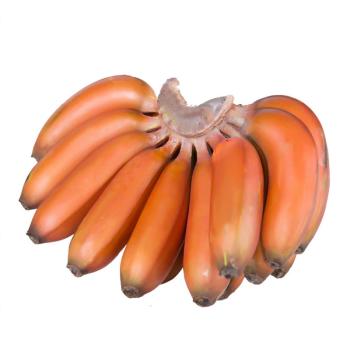 果甜蜜就 福建红皮香蕉 美人蕉 5斤