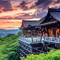 当地玩乐:经典景点全覆盖!日本大阪-京都一日游