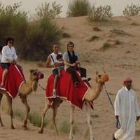 當地玩樂 : 傍晚沙漠穿越!迪拜沙丘馳騁+駱駝騎行(含燒烤晚餐)