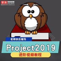 project2019視頻教程項目管理pmp工程類實戰培訓教學自學在線課程