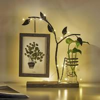 ins水培小擺件家居裝飾品創意客廳電視房間臥室桌面個性擺設禮品