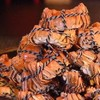 吃貨福利 : 洲際酒店金秋自助蟹宴,打造饕餮大餐!上海錦江湯臣洲際大酒店大閘蟹自助晚餐