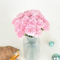 花點時間 康乃馨鮮花速遞 20枝單頭康乃馨