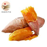 龍九黃心蜜薯 10斤裝