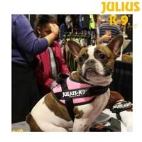 Julius K9 狗胸背帶牽引繩
